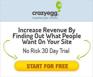 crazyegg-banner-ad-design-lambanner1