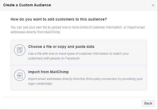 lambanner-tao-custom-audience-mailchimp