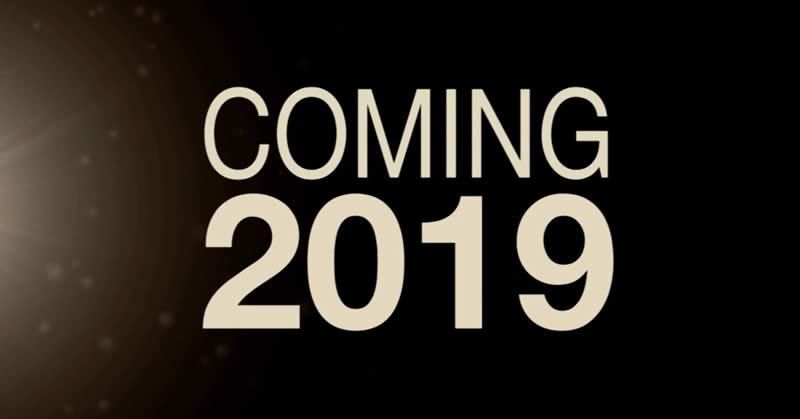 Thiết kế banner 2019 tại Lambanner