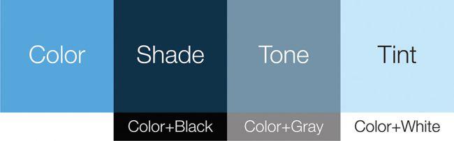 Chọn màu website : Màu chủ đạo