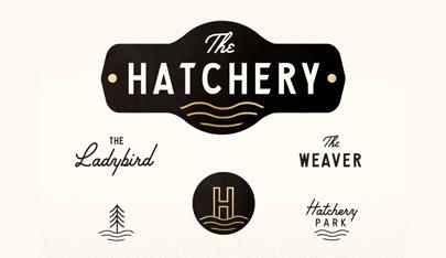 The-Hatchery-Branding