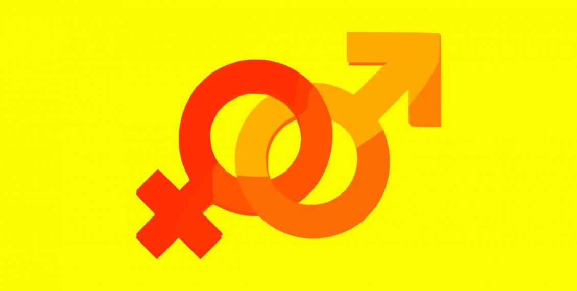 Khuôn mẫu thiết kế : Thiết kế nam tính và nữ tính