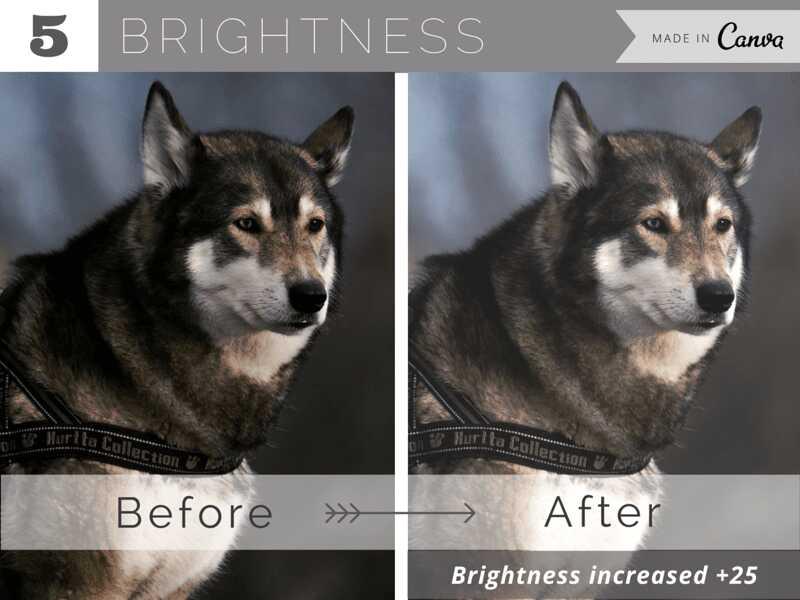 10 cách làm cho hình ảnh đẹp hơn