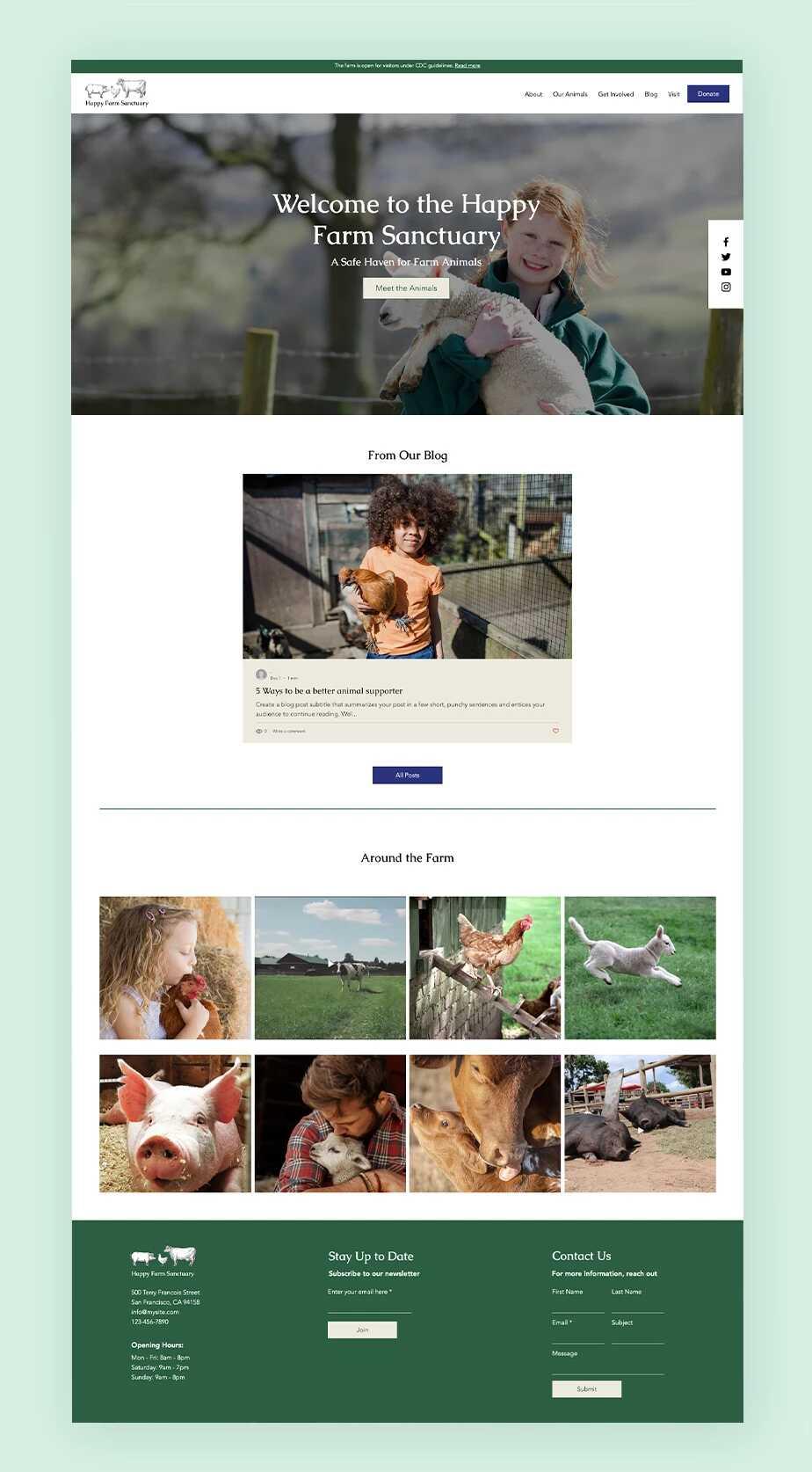 09-mnt-design-kieu-website_optimized