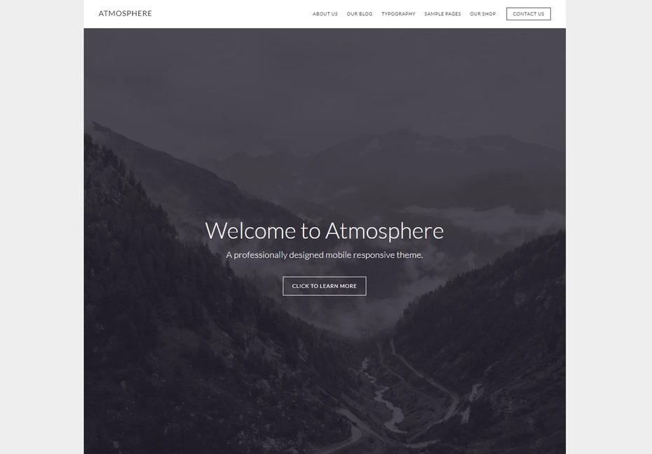 Top theme WordPress tốt nhất năm 2022 (Miễn phí và trả phí)